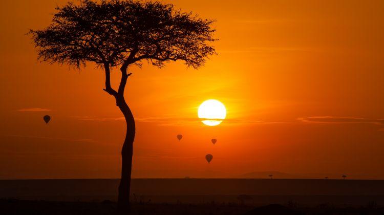 5 Day Adventure Tented Camps Safari in Mikumi & Udzungwa