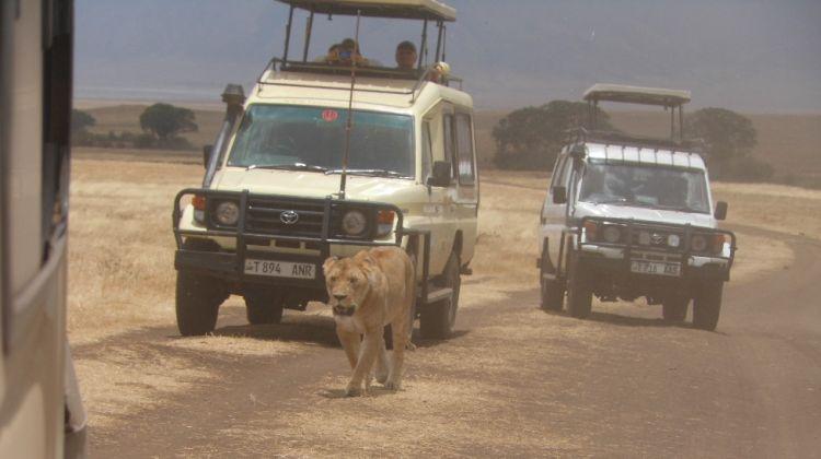 5 Day Camping Safari in Tanzania