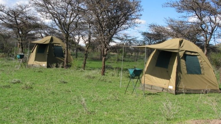 5 Days 4 Nights Camping Safari + 2 Nights Accommodation