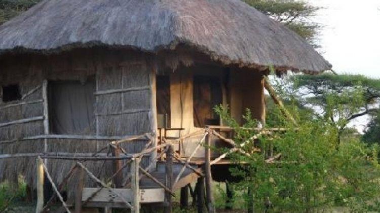 5 Days - Budget Lodging Safari in North Tanzania