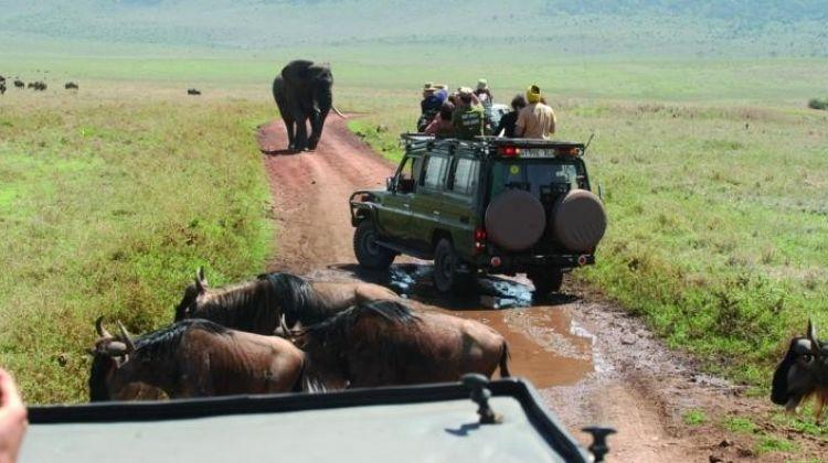 5 days Safari - Manyara,Ngorongoro and Serengeti