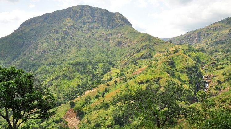6 Day Usambara Mountains Trekking