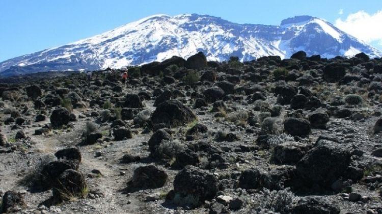 6 Days Kilimanjaro Climb - Marangu Route
