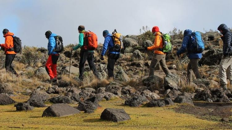 6 Days Mt. Kilimanjaro Climbing + 2 Nights Stay