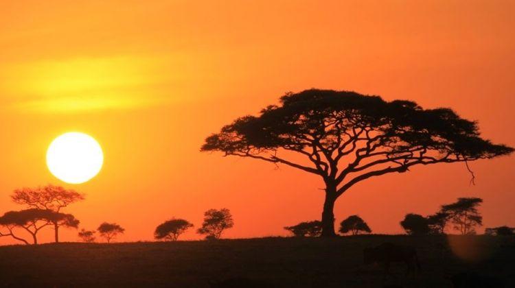7 Day Walking Safari in Ngorongoro and Lake Natron