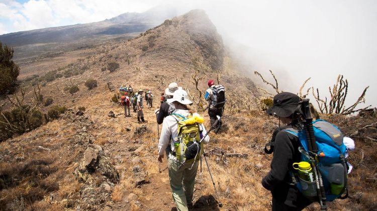 7 Days Mount Kilimanjaro Trekking - Machame Route