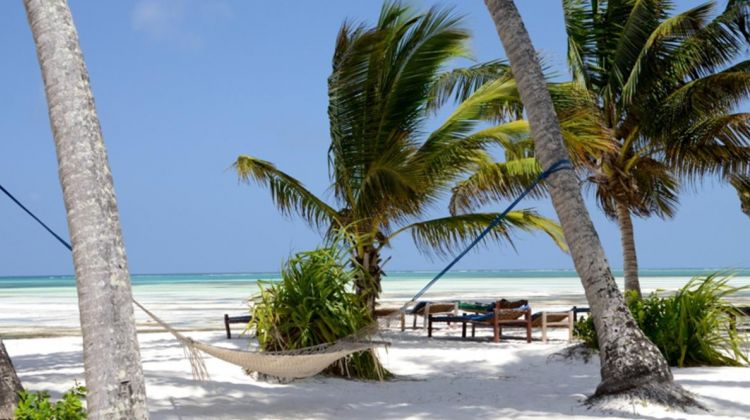 7N/8D Safari Bush to Zanzibar Beach Combo