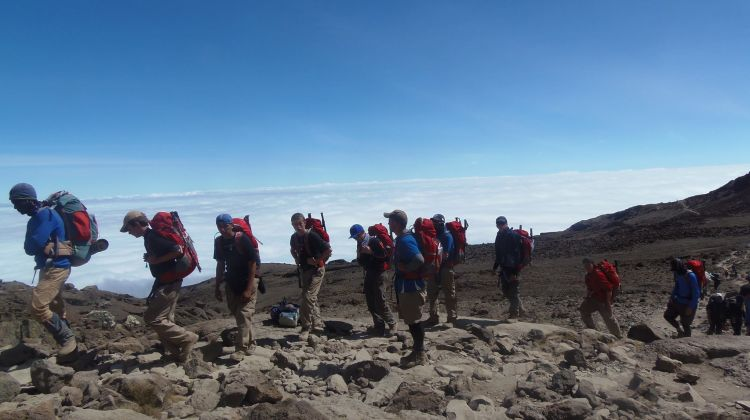 8 Days Mount Kilimanjaro Trekking - Lemosho Route