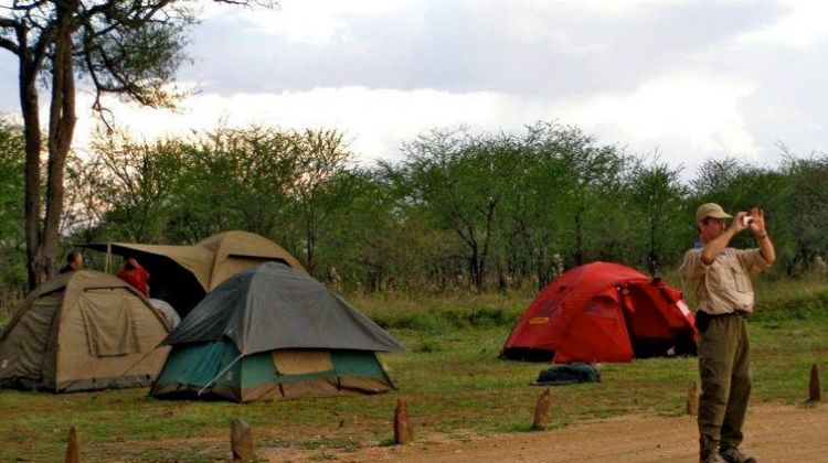Adventure Camping Safari: Budget Style