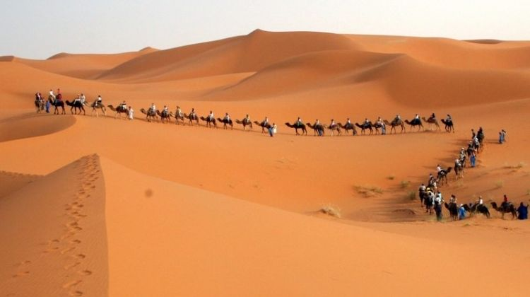 Travel Talk Tours Morocco Reviews