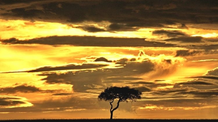 African Insight - Southbound Accommodated 7 Days