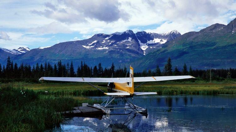 Alaskan Wildlife & Wilderness