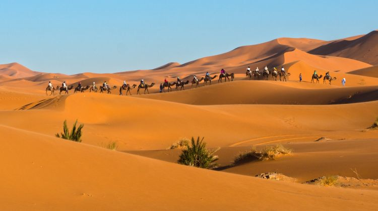 All Aspects of Morocco  Tour