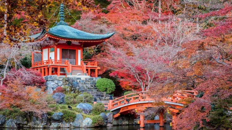 Ancient & Modern Japan