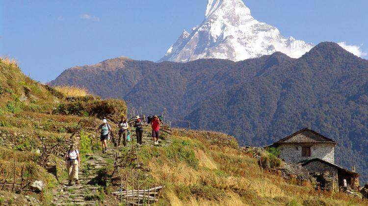 Annapurna & Chitwan in Luxury