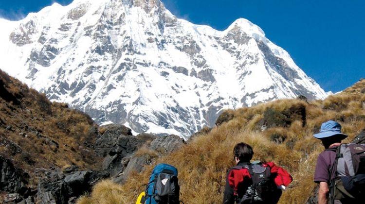 Annapurna Explorer