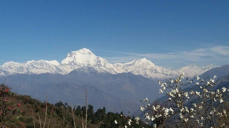 Annapurna Sanctuary Trek: 14 Days