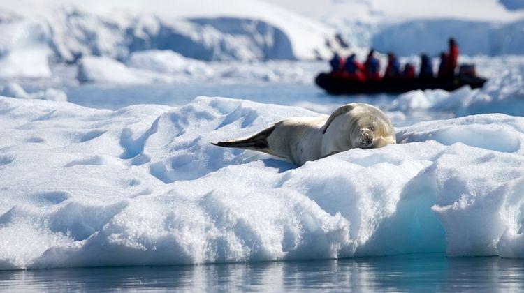 Antarctic Explorer from Ushuaia 10 day
