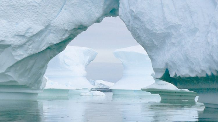 Antarctic Explorer from Ushuaia