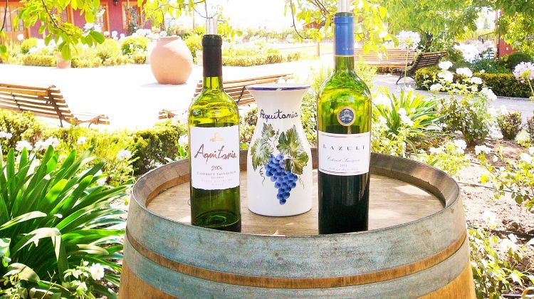Aquitania & Cousiño Macul Wine Tour
