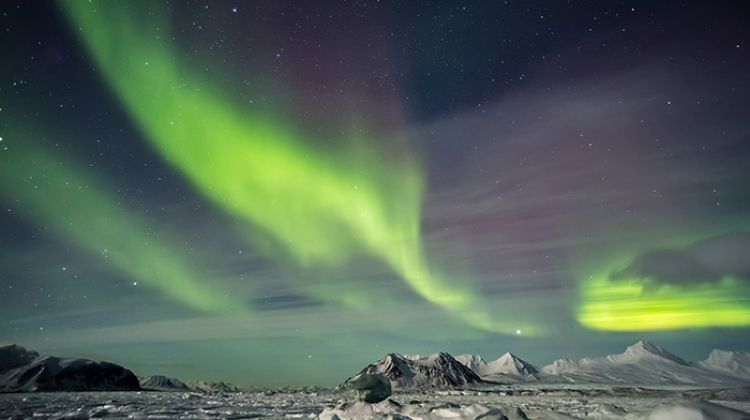 Arctic Express: Greenland's Northern Lights - Fly North, Fly South  (Ocean Nova) 2016 - 2017