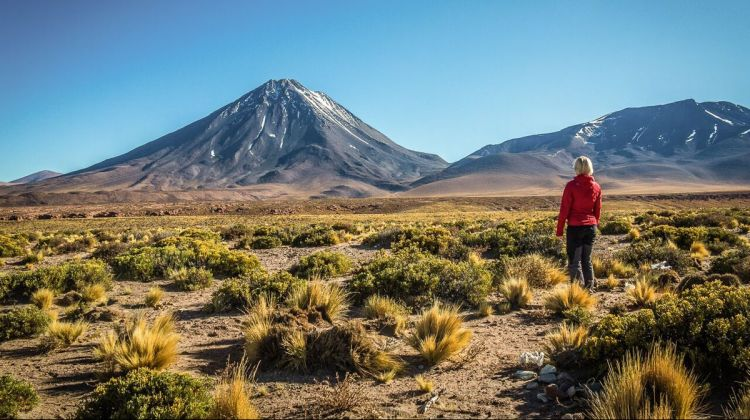 Atacama Desert: Culture & Nature (4 Days)