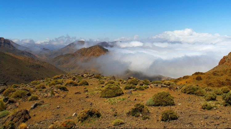 Atlas Mountain & 3 Valleys Guided Day Trip from Marrakech