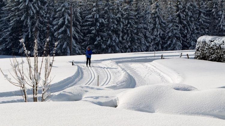 Austrian Tyrol Skate Week