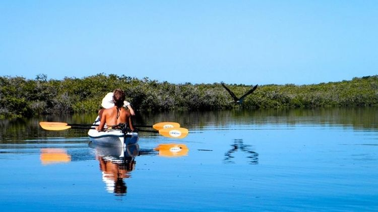Baja Kayak Expedition 9D/8N (Cooperatively Catered)