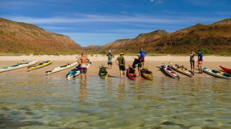 Baja Kayak Quick Adventure 4D/3N (Cooperatively Catered)