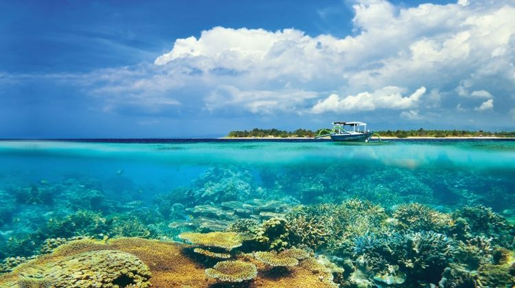 Bali Island Hopper 2018/19