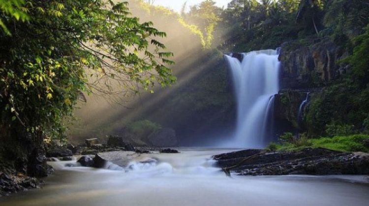 Balinese Serenity Tour