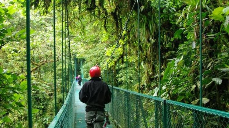Basic Costa Rica: Coastlines & Cloud Forests