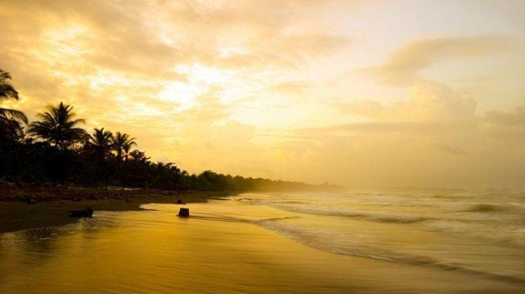 Beaches And Nature With Tambor