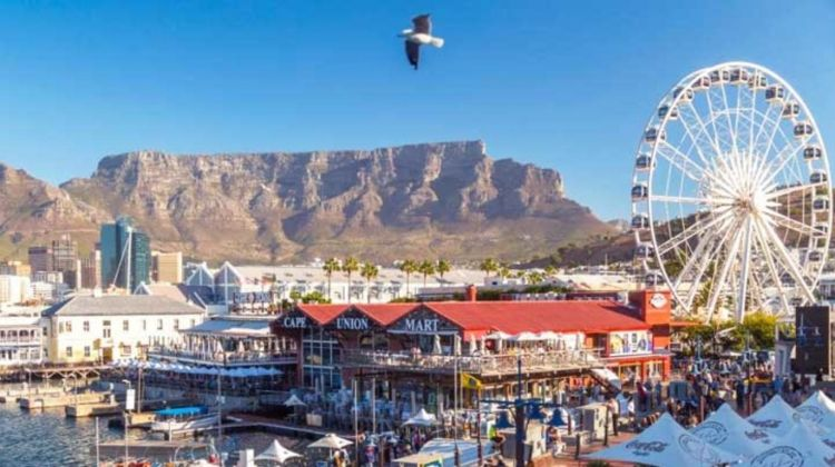 Best of Cape Town: Table Mountain, Wine and Gardens