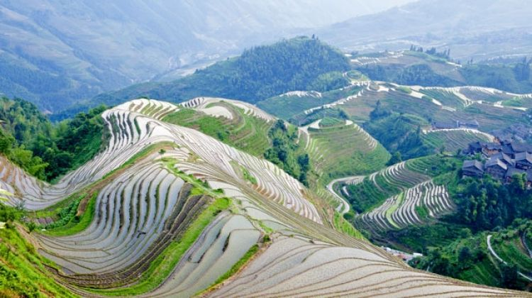 Best of China Small Group Tour: 11 Days