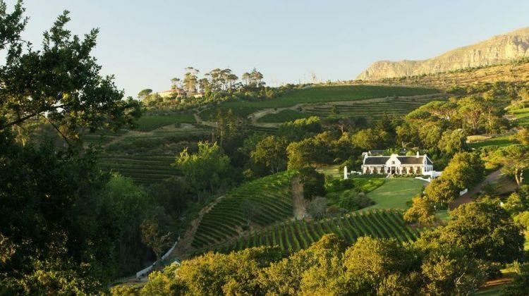 Best of Historic Constantia Wine Valley