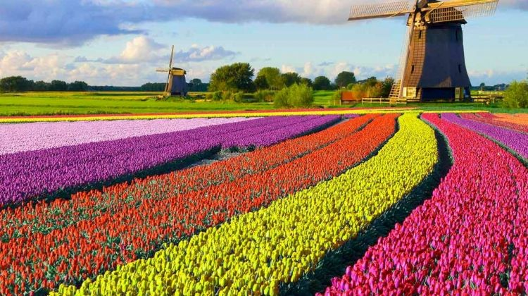 Best of Holland