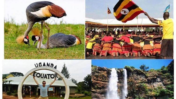 Best of Western Uganda Safari