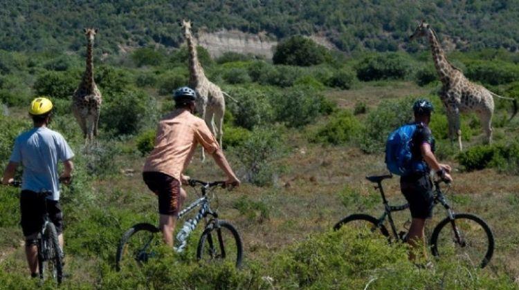 Bike Adventure Through Kilimanjaro