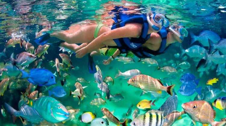 Boat tour to exotic caves with snorkelling