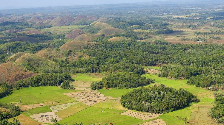 Bohol Countryside Tour from Bohol