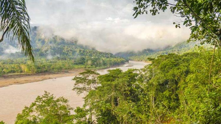Bolivian Amazon Jungle