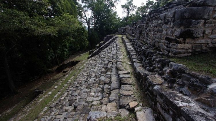 Bonampak & Yaxchilan 2D/1N