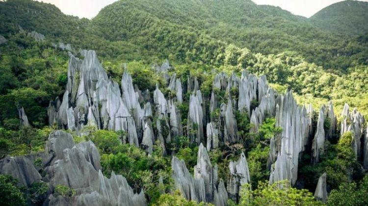 Borneo & Mt Kinabalu Encompassed
