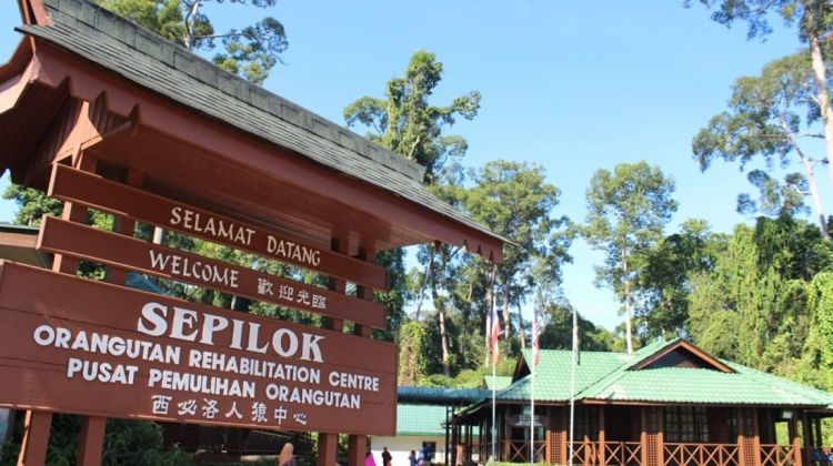Borneo Family Holiday