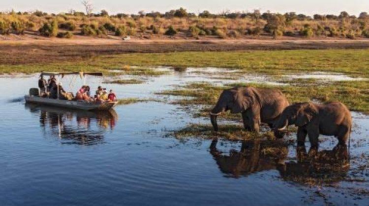 Botswana Delta and Wildlife in Comfort