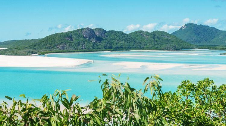 Brisbane to Cairns Adventure