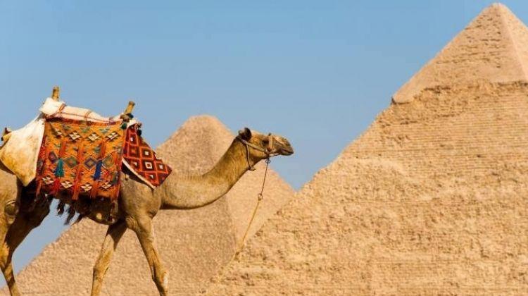 Cairo Short layover tour to Giza Pyramids & Bazaar