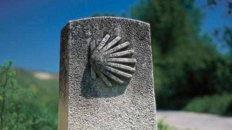 Camino - Logrono to Burgos